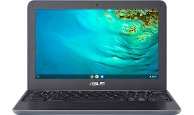 Asus ChromeBook C202XA - GJ0051 Chromebook (11,6 Zoll, MediaTek, 32 GB SSD) kaufen
