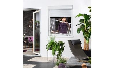 hecht international Insektenschutz-Fenster »COMFY SLIDE XL«, BxH: 75x100 cm kaufen
