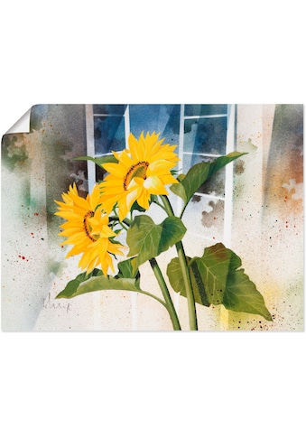 Artland Wandbild »Ansicht mit Clematis«, Blumen, (1 St.), in vielen Größen &... kaufen