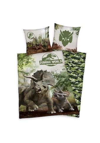 Herding Kinderbettwäsche »Jurassic World, Baumwoll-Renforcé« kaufen