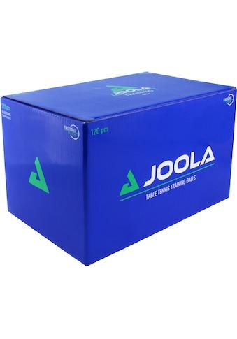 Joola Tischtennisball »Joola Training 40+ 120er Karton«, (Packung, 120) kaufen