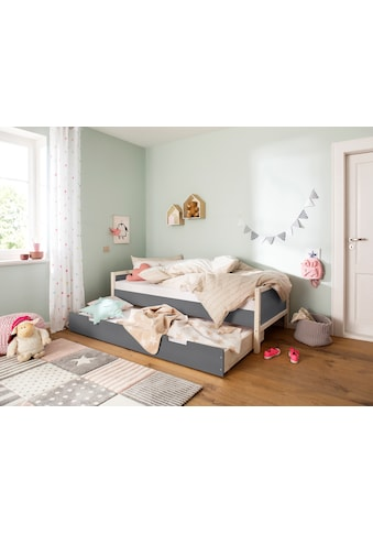 Lüttenhütt Bettschubkasten »Janne«, aus schönem massivem Kiefernholz, ausziehliege... kaufen