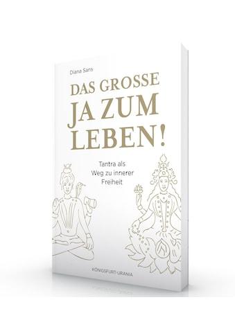 Buch »Das große JA zum Leben! / Diana Sans« kaufen