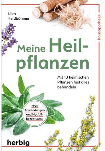 Buch »Meine Heilpflanzen / Ellen Heidböhmer« kaufen