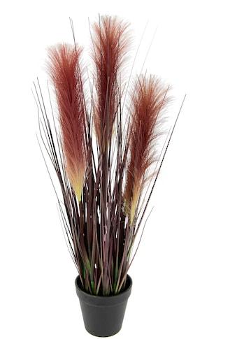 Leonique Kunstgras »Josephina« kaufen