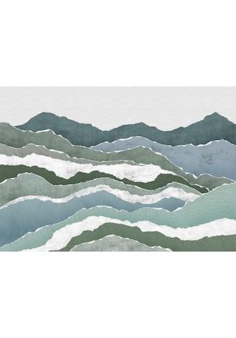 Komar Fototapete »Vliestapete Sierra«, bedruckt-geblümt-floral-realistisch, 400 x 280 cm kaufen