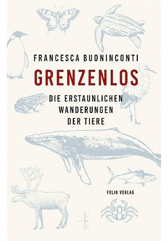 Buch »Grenzenlos / Francesca Buoninconti, Werner Menapace« kaufen