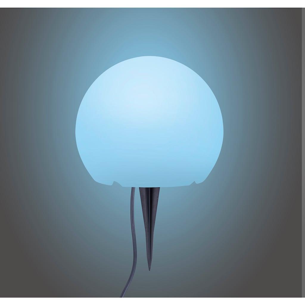 TRIO Leuchten LED Außen-Stehlampe »NECTOR«, LED-Board, 1 St., Farbwechsler, RGBW