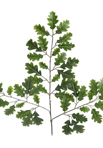 Botanic-Haus Kunstzweig »Eichenzweig« kaufen