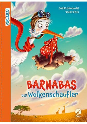 Buch »Barnabas der Wolkenschaufler / Sophie Schoenwald, Nadine Reitz« kaufen