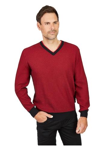 Hajo V-Pullover kaufen