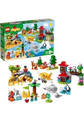 """LEGO® Konstruktionsspielsteine """"Tiere der Welt (10907), LEGO® DUPLO®"""", (121 - tlg.) kaufen"""