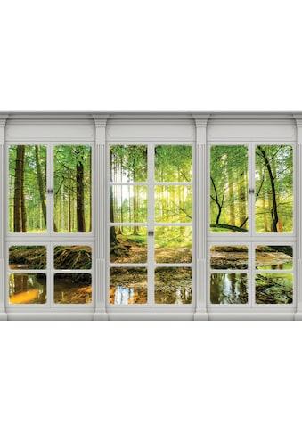 Consalnet Vliestapete »Sonnenwald Fensterblick«, verschiedene Motivgrößen, für das... kaufen