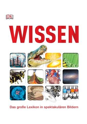 Buch »Wissen / DIVERSE« kaufen