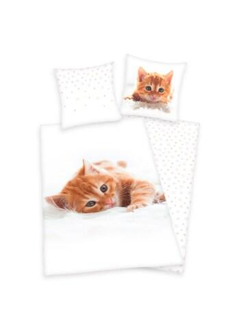 Kinderbettwäsche »Katze«, Herding Young Collection kaufen