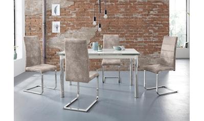 my home Essgruppe »Nelson/Cosy«, (Set, 5 tlg.), mit 4 Stühlen, Tisch ausziehbar,... kaufen