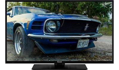 Panasonic TX - 39GW334 LED - Fernseher (98 cm / (39 Zoll), Full HD kaufen