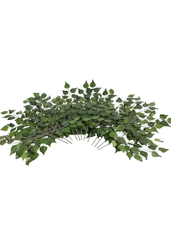 Botanic-Haus Kunstzweig »Birkenzweig« kaufen