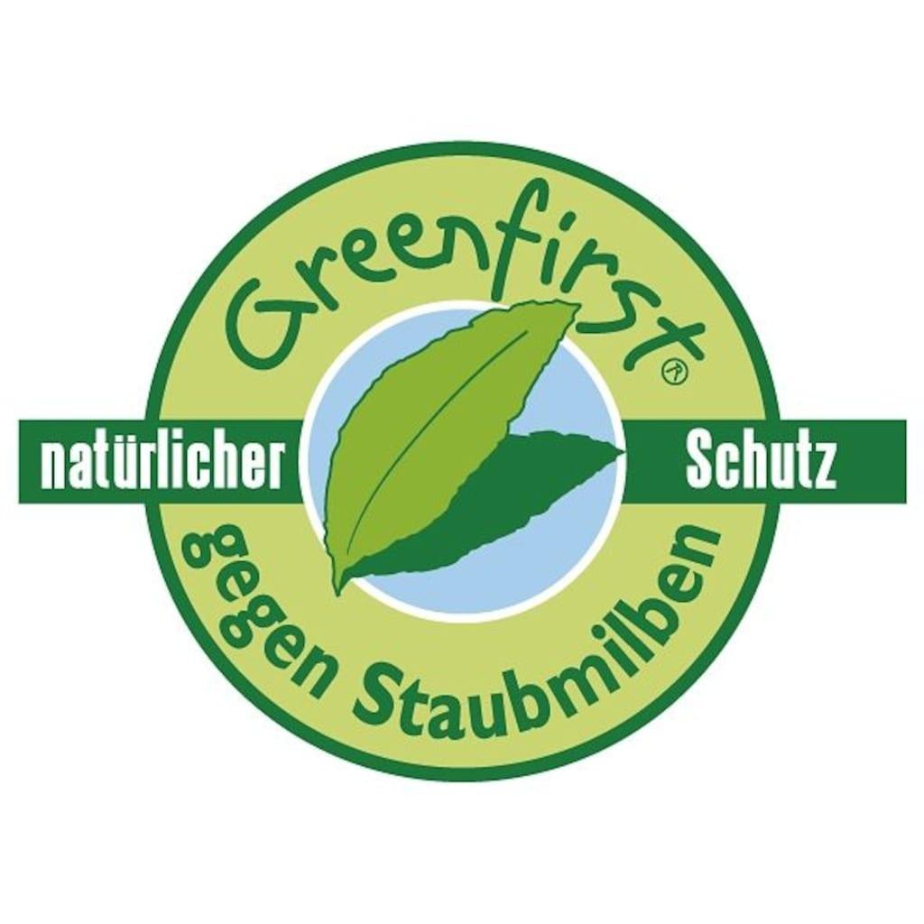 FAN EXCLUSIV Kaltschaummatratze »Punktoflex De Luxe KS«, (1 St.), mit Greenfirstbezug gegen Milben