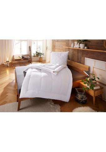 Kunstfaserbettdecke, »Jubu Mais«, my home, Füllung: 100% Polyactid - Faser (Maisvlies), Bezug: 100% Baumwolle kaufen