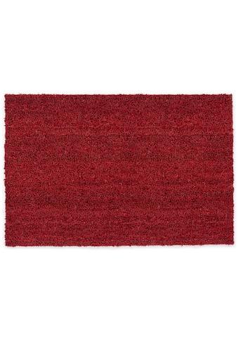 Fußmatte, »Kokosvelours 106«, ASTRA, rechteckig, Höhe 16 mm, Naturprodukt kaufen