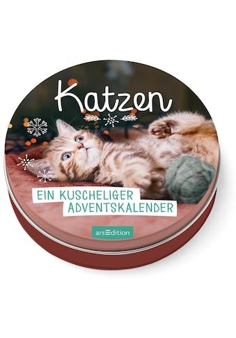 Buch Katzen  -  Ein kuscheliger Adventskalender für Katzenfans / DIVERSE kaufen