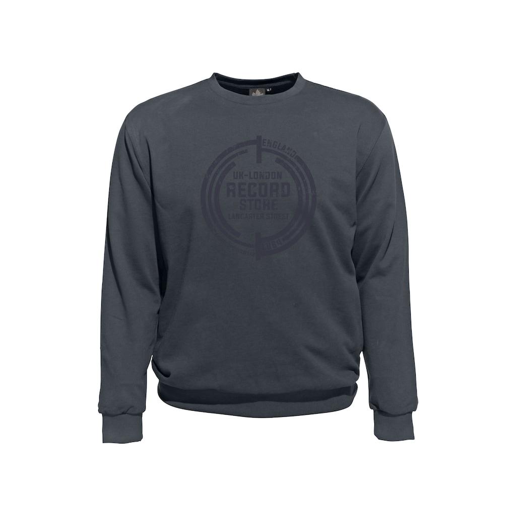 AHORN SPORTSWEAR Sweatshirt, mit modischem Frontdruck