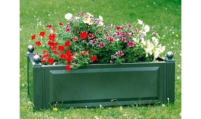 Pflanzkasten grün , 100 cm kaufen