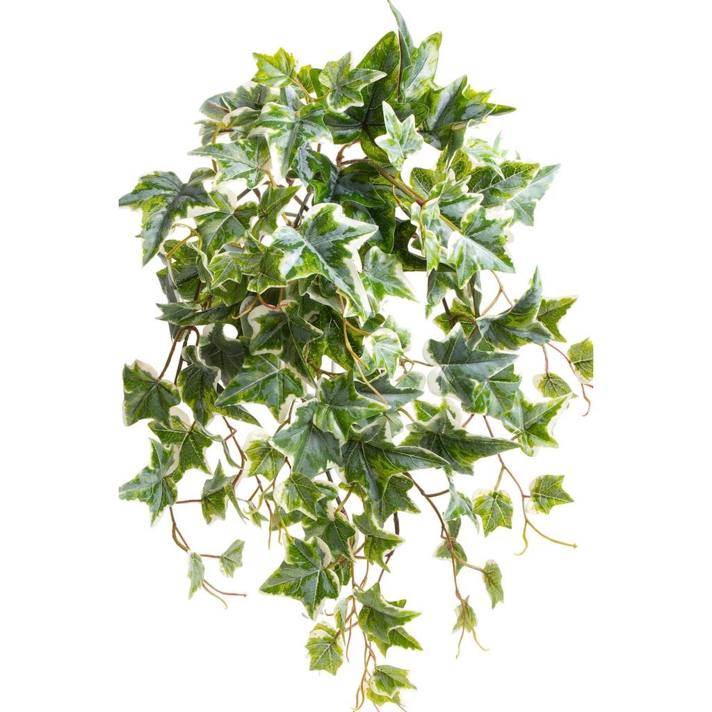 Botanic-Haus Künstliche Zimmerpflanze »Efeu-Hängebusch mit 10 Stielen«