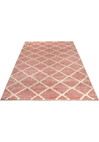 Teppich, »Arvid«, andas, rechteckig, Höhe 14 mm, maschinell gewebt kaufen