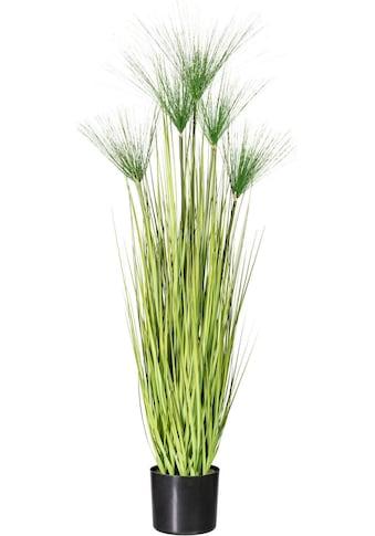 Creativ green Kunstgras »Miscanthus Cyperus« kaufen