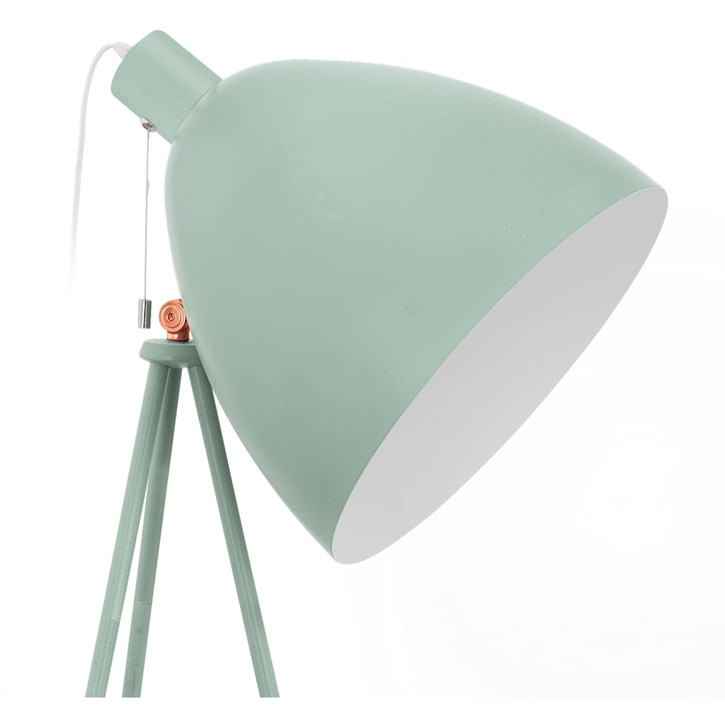 EGLO Stehlampe »DUNDEE«, E27