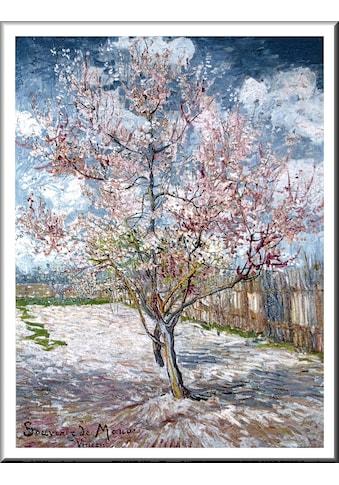 Home affaire Bild »V. van Gogh - Souvenir de Mauve«, mit Rahmen kaufen