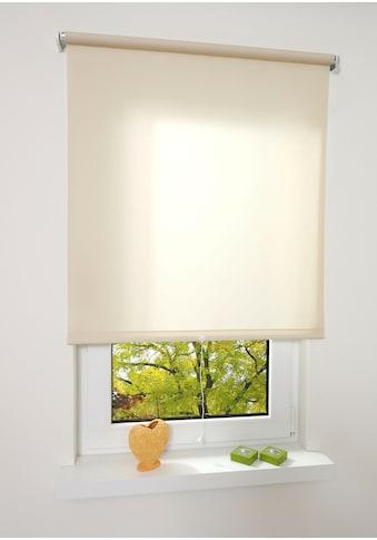Liedeco Springrollo »Uni«, Lichtschutz, freihängend, lichtdurchlässig kaufen