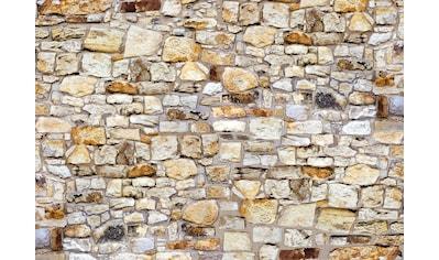 Papermoon Fototapete »The Wall« kaufen
