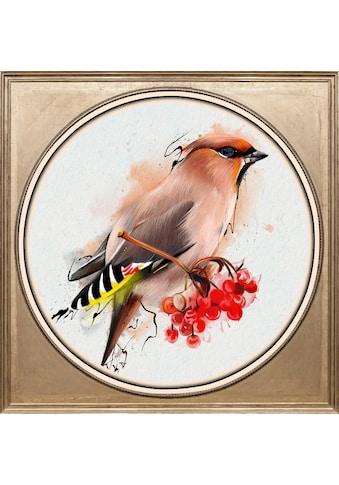 queence Acrylglasbild »Bunter Vogel II« kaufen