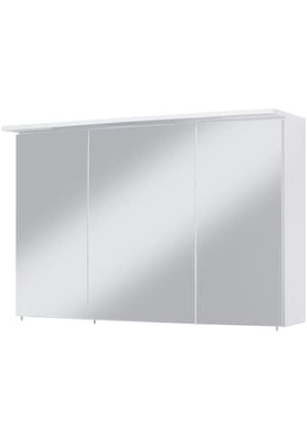 Spiegelschrank »Flex«, Breite 100 cm kaufen