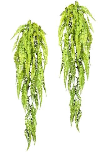 Creativ green Kunstranke »Adianthumhänger«, 2er Set kaufen