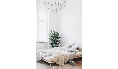Karup Design Massivholzbett »Senza« kaufen