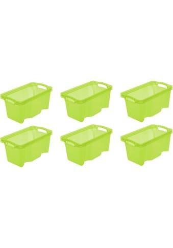 keeeper Aufbewahrungsbox »franz«, (Set, 6 St.), 6,5 Liter kaufen