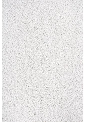 Andiamo Teppichboden »Clara«, rechteckig, 9 mm Höhe, Meterware, Breite 400 cm, Länge... kaufen