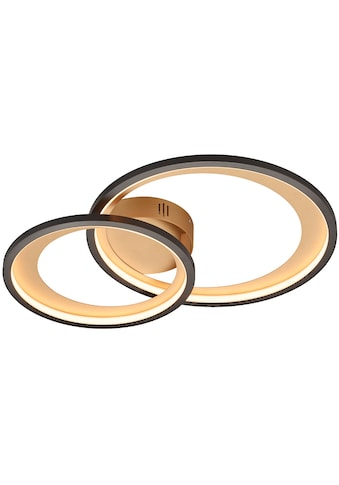 TRIO Leuchten LED Deckenleuchte »GRANADA«, LED-Board, 1 St., Warmweiß, LED Deckenlampe kaufen
