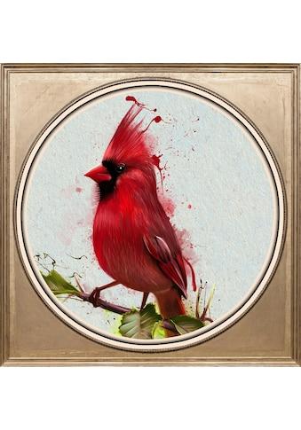 queence Acrylglasbild »Roter Vogel« kaufen