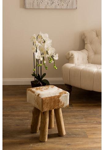 my Flair Sitzhocker »Neelu«, Braun / Weiß kaufen