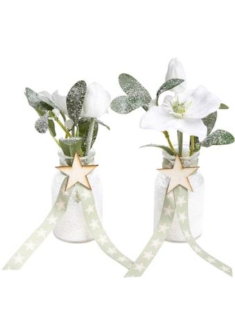 Botanic-Haus Künstliche Zimmerpflanze »Mistel-Arrangement« kaufen