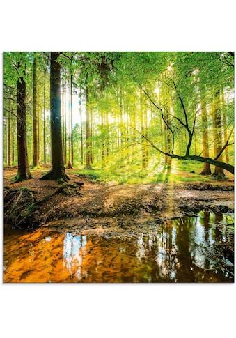 Artland Glasbild »Wald mit Bach«, Wald, (1 St.) kaufen