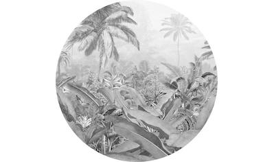 Komar Vliestapete »Amazonian Spirit«, abstrakt-botanisch kaufen