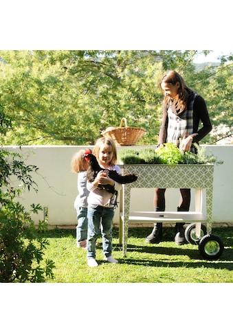 Herstera Garden Hochbeet »Barcelona Dale«, BxTxH: 75x35x80 cm kaufen
