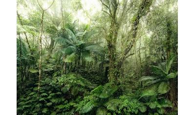 Komar Fototapete »Mindfulness«, bedruckt-floral-botanisch kaufen