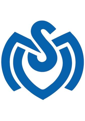 Wall-Art Wandtattoo »MSV Duisburg Retro Logo« kaufen